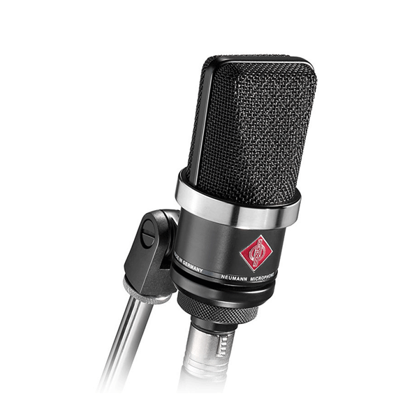 Neumann TLM 102 Wired Studio Microphone